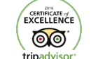 TripAdvisor awards best Shaxi guesthouse 2016