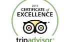 TripAdvisor awards best Shaxi guesthouse 2016